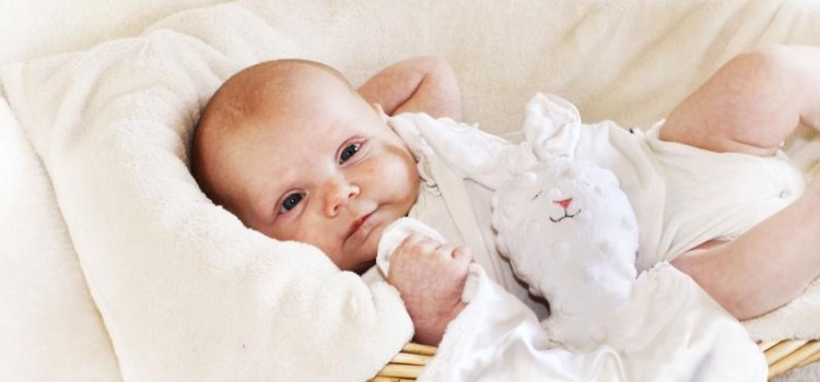 How to Choose a Lovey for your Baby